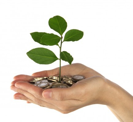Hand with Coins & Plant
