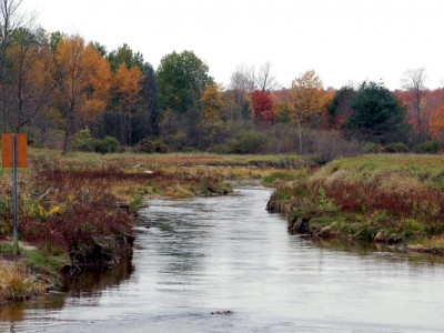 Money available for Muskegon River Watershed projects