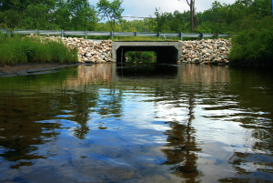 Funds available to remove dams and replace culverts