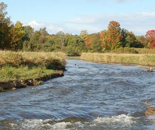 Volunteer river, stream and creek cleanup grants available