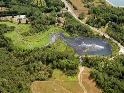 Study shows Manton Dam removal increased trout population
