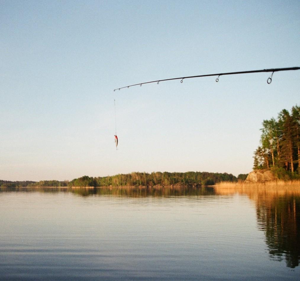 fishing pole over lake